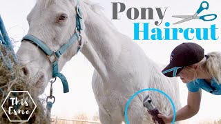 Pony HAIRCUT! | Clipping my horse MYSELF for the First time in 5 years! AD | This Esme