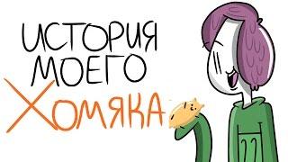 История Моего Хомяка | Мирби 60к