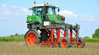 Special FENDT 310 Vario High Clearance - Hoeing apple trees