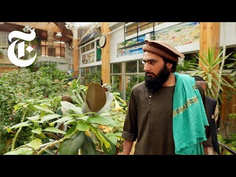 Inside an Abandoned Mansion That 150 Taliban Now Call Home | Afghanistan News