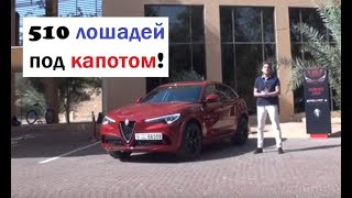 Самый быстрый Alfa Romeo Stelvio Quadrifoglio тест-драйв Автопанорама