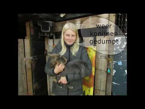 weer konijnen gedumpt vlog 18 #