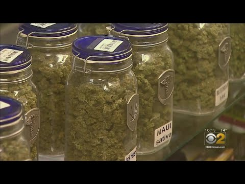 Michael Berry - Chicago Suburb Will Use Revenue From Recreational Marijuana For Reparations