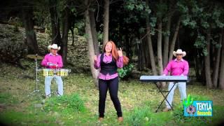 Amantes del Sur - El sol no regresa - Tekyla Records