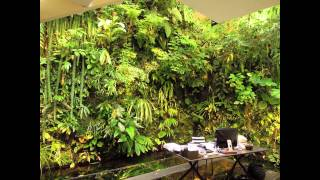 The Best Vertical Garden