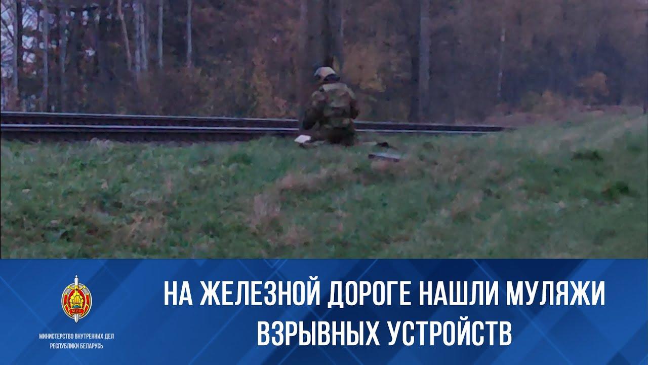 В Белоруссии нашли муляжи взрывных устройств