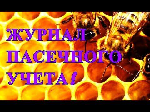 Дальнегорский районный суд Приморского края