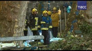 Огромное 200 летнее дерево рухнуло на толпу людей в Португалии