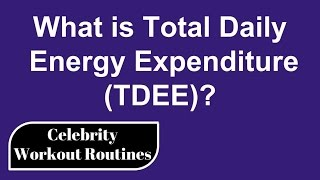 What is Total Daily Energy Expenditure