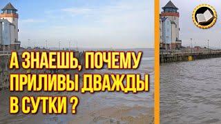 Почему приливы и отливы случаются дважды в сутки?