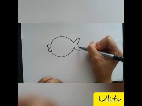 [Uli.tv] Vẽ , Tô Màu Con Cá đơn Giản . Học , Chơi Cùng Bé .