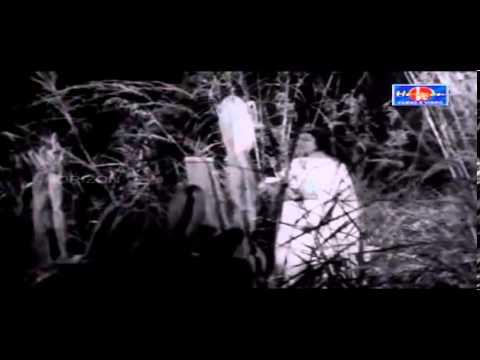 Nizhalayi Ozhuki Varum Njan Yamangal Thorum..!!(Mini Anand)