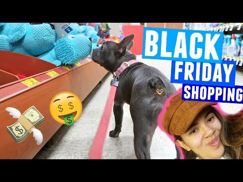 Blue goes Black Friday Shopping and I spend all my money on her and a hat