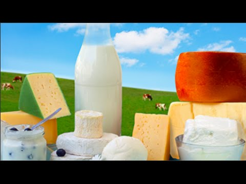 Everything You Need To Know About The Dairy Industry In 15 Minutes