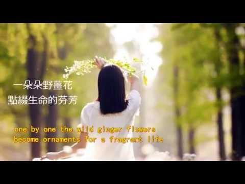 Taiwan Campus Medley ❤ OliveTree & ❤ English