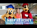 WHAT TO EXPECT FROM THE DISNEY INTERNATIONAL PROGRAM | CEP and ICP tips