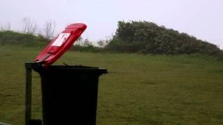 Funny Weather - Wheelie Bin