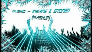 Busho - Insane & Stoned (Mashup)