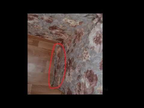 Самый ужасный ремонт! Настоящая жесть в отделке  Ремонт квартир в Волгограде