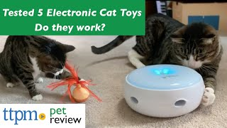 Electronic Cat Toy Reviews | Do They Work? | (We Tested Them All)