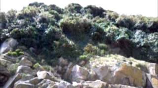 F4FET/P - F4HAU/P on IOTA EU156 Tombelaine island