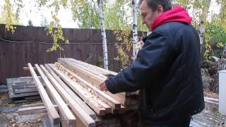 видео Способы защиты от короеда