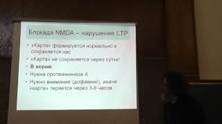 Память и научение - Сергей Глаголев