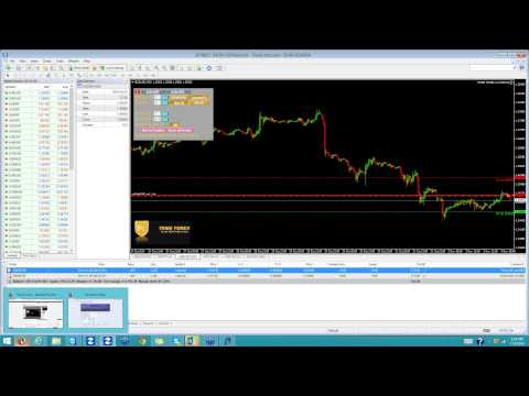 Tribe Forex LIVE TRADE ROOM