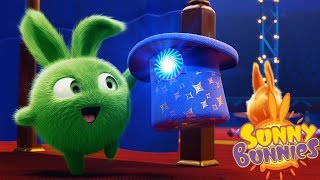 Cartoons for Children | SUNNY BUNNIES - HOPPERS MAGIC HAT | Funny Cartoons For Children