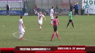Serie D Girone D Trestina-Sammaurese 1-1