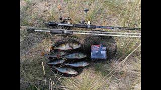 Долгожданное видео за долгое время Рыбалка на крупного окуня