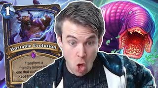 (Hearthstone) Unstable Evolution Insanity