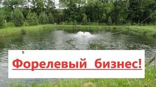 видео Бизнес на разведении аквариумных рыб: организация, план