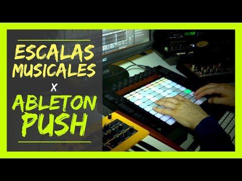 TOCA TODAS LAS ESCALAS MUSICALES SIN TENER NI IDEA con ABLETON PUSH MKI | Sonido Hip Hop
