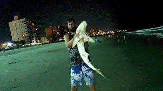 Caught a Shark | Myrtle Beach