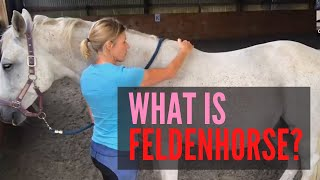 What is FeldenHorse? (Topline Makeover Challenge Bonus)