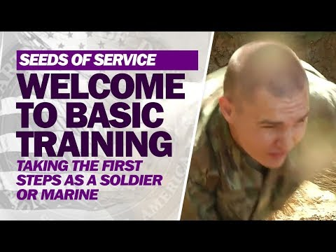 Welcome to Basic Training