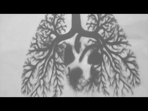 KARI (original mix) techno, mental, modular