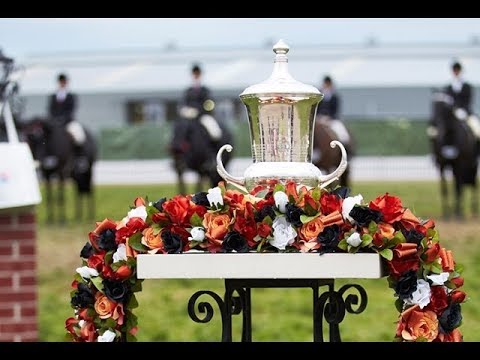 The Col. A.V. Pope Cup - 2017 Royal Melbourne Show Horses in Action