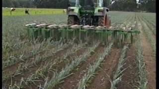 Mechanical Weeding, 9 rows