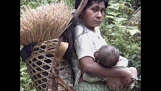 Colombia EtnoMusical-Musica Tradicional Indigena