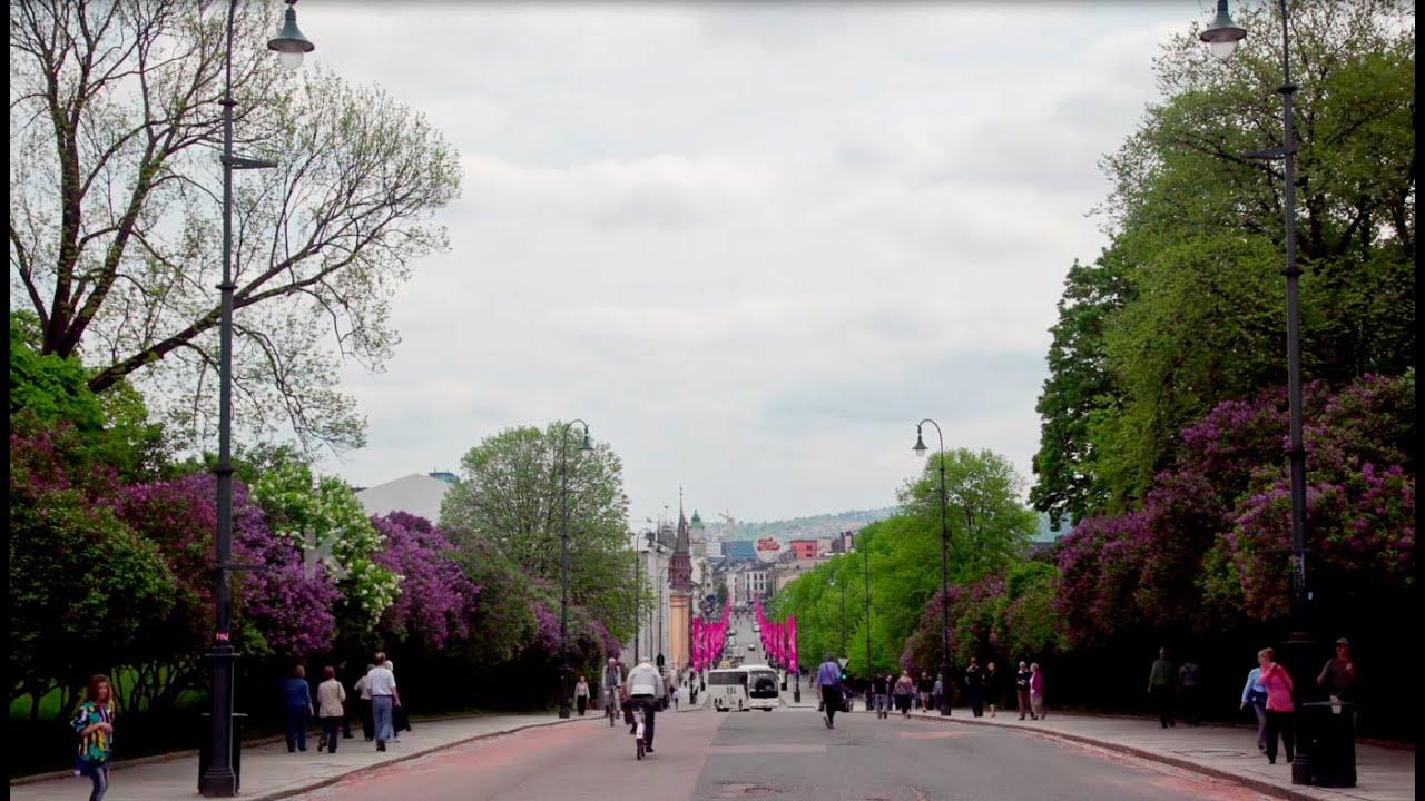 e4c2a684 Karl Johans gate, Oslo's main street - YouTube