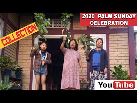 Palm Sunday celebrated at a distance