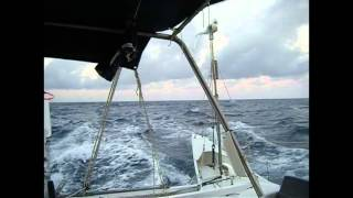 Catamaran sailing and Humpback Whale jumping