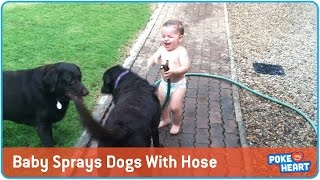Baby Sprays Dogs With Hose and Can't Stop Laughing