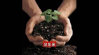 파워라이트(석탄재,석탄회,bottom ash)  홍보영…