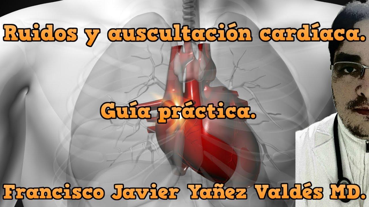 【Auscultación y ruidos cardíacos】- Guía práctica. 💉🏥