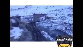 видео Гдынк