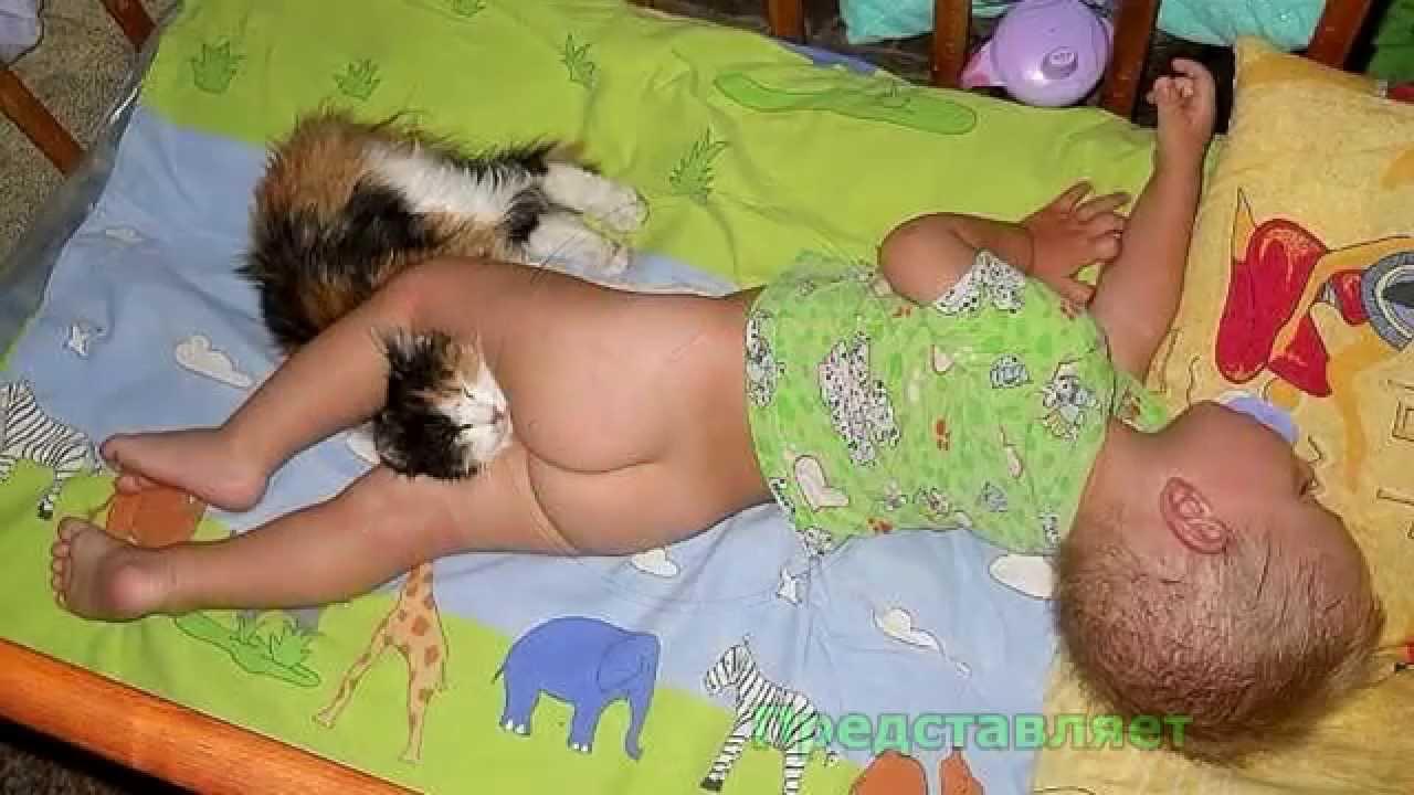 Datalife engine версия для печати любовь малышей к животным .