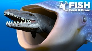 One of TheGamingBeaver's most viewed videos: BIGGEST FISH EATS THE MOSASAUR!!! - Fish Feed Grow